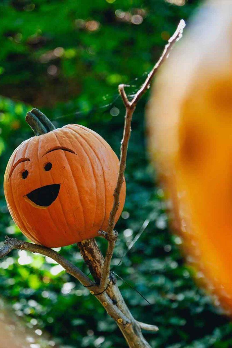 How to create Halloween decor